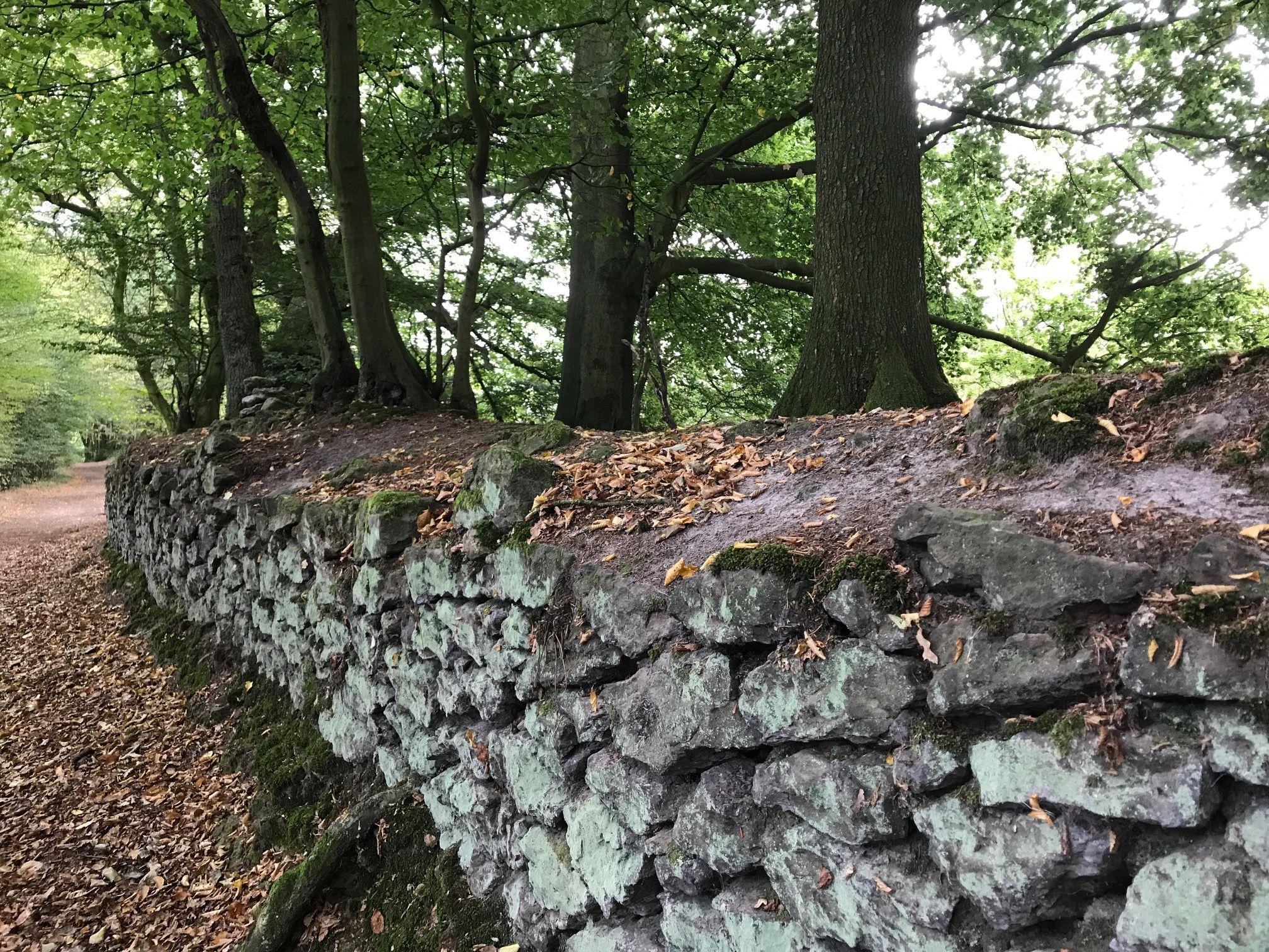 Kleines Loblied Der Mauer