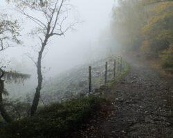 Weg In Den Nebel